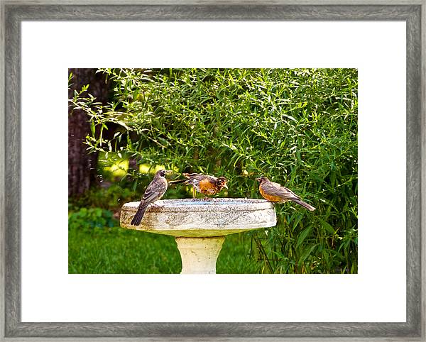 What Is So Great About A Bath? Framed Print