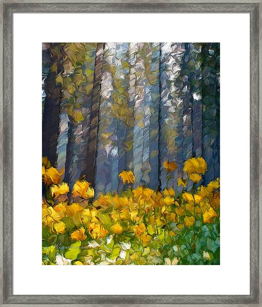 Distorted Dreams By Day Framed Print