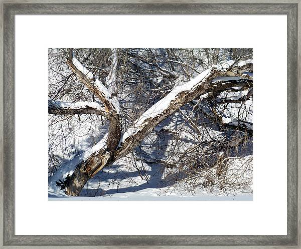 Distressed  Framed Print