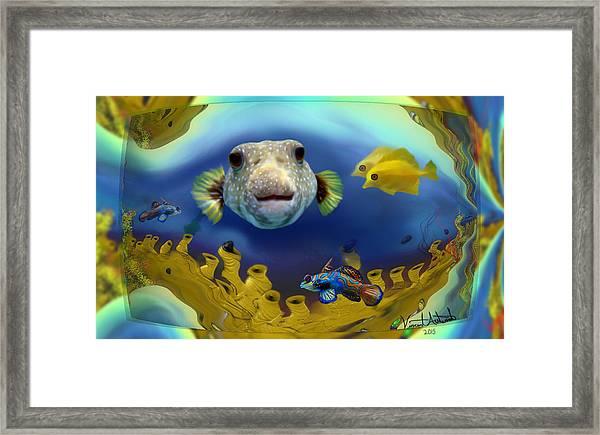 Diver's Perspective Framed Print