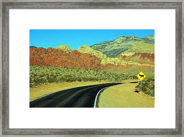 Diversified Landscape Framed Print