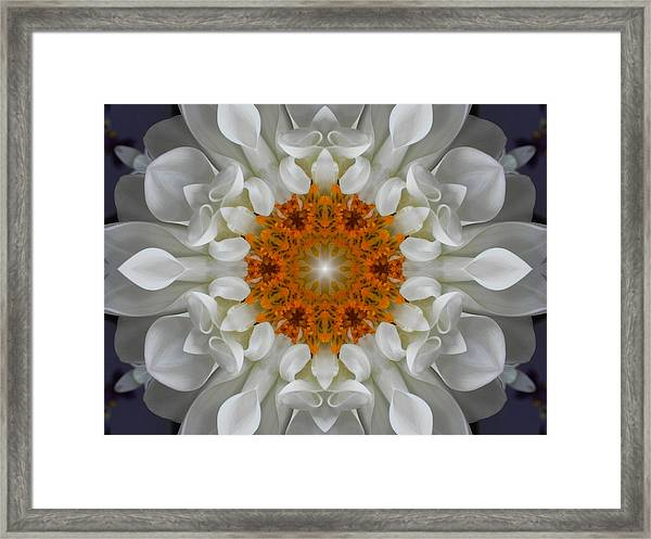 Divine Love Flower Mandala Framed Print