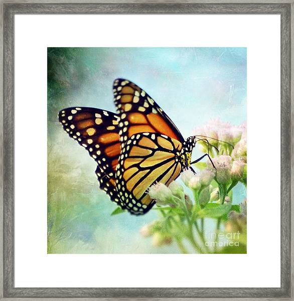 Divine Things Framed Print