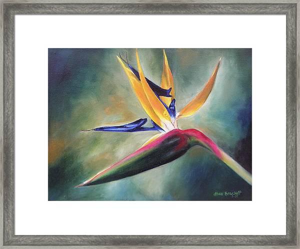 Dj's Flower Framed Print