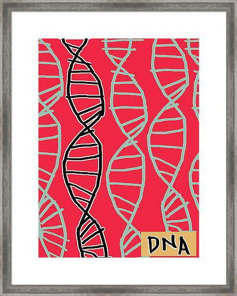 Dna Helices Framed Print