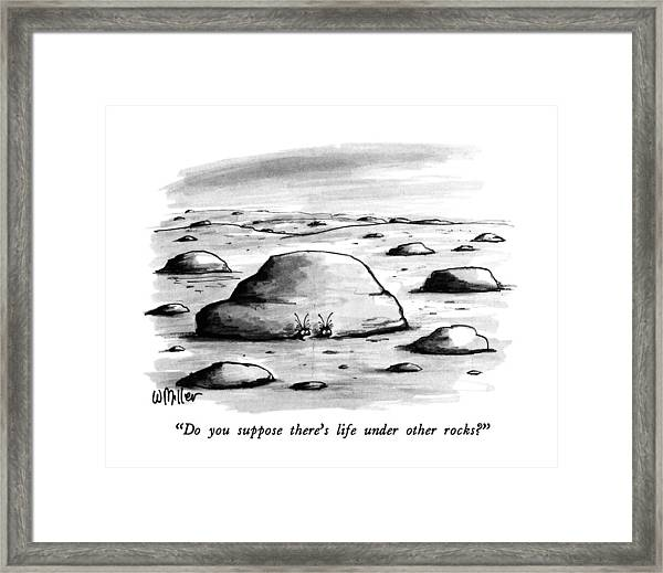 Do You Suppose There's Life Under Other Rocks? Framed Print