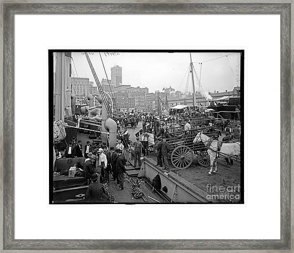 Docks Framed Print