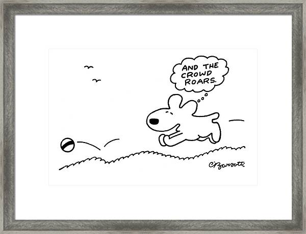 Dog Chases After A Ball Framed Print