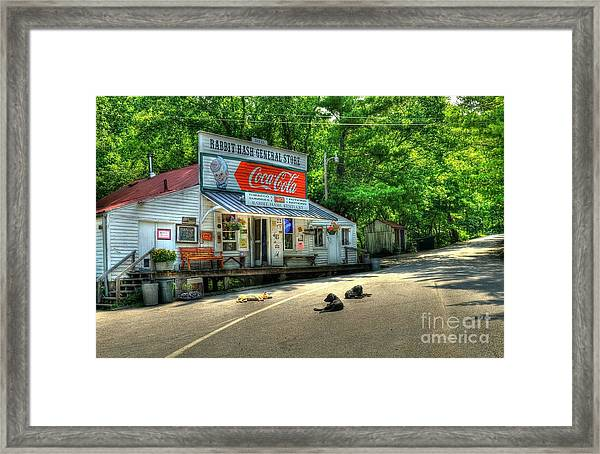 Framed Print featuring the photograph Dog Day Afternoon by Mel Steinhauer