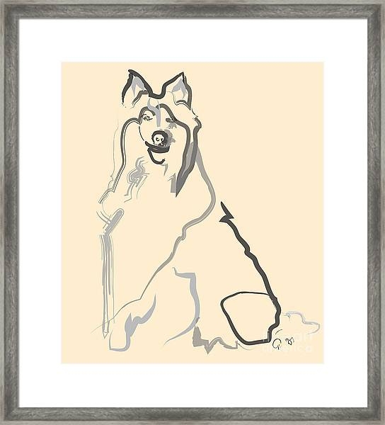 Dog - Lassie Framed Print