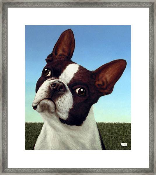Dog-nature 4 Framed Print