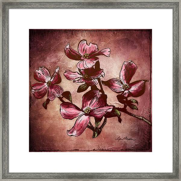 Dogwood Branch I Framed Print