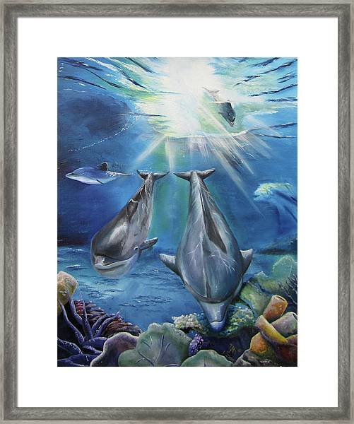 Dolphins Playing Framed Print