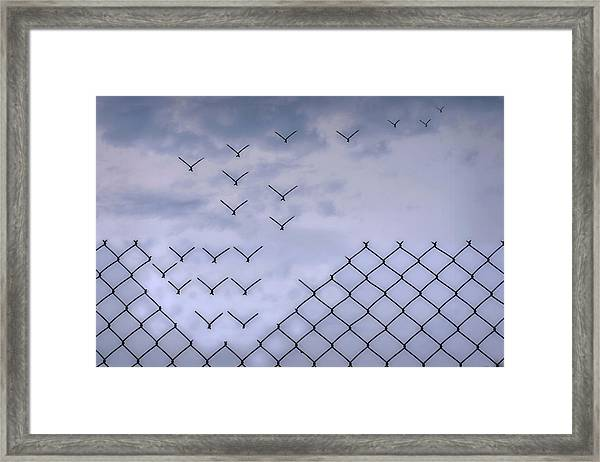 Dona??t Fence Me In! Framed Print