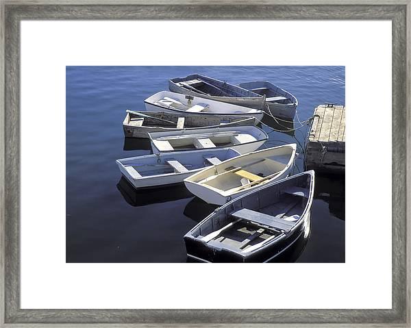 Dorys Framed Print