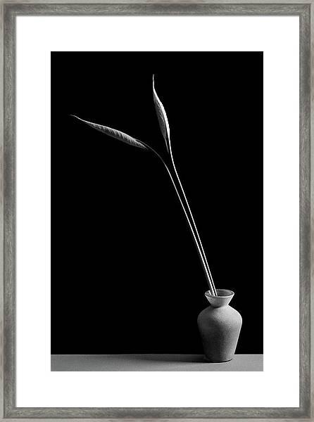 Double Framed Print by Kristina Oveckova