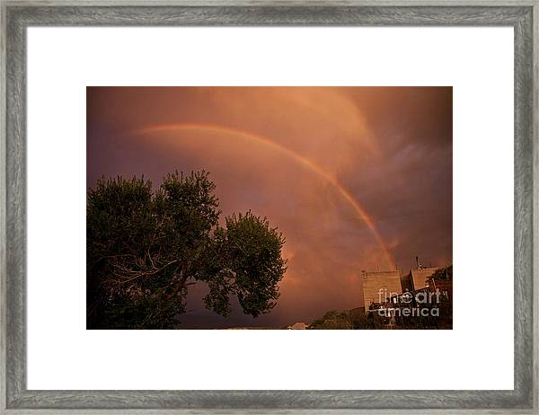 Double Red Rainbow With Tree In Jerome Framed Print