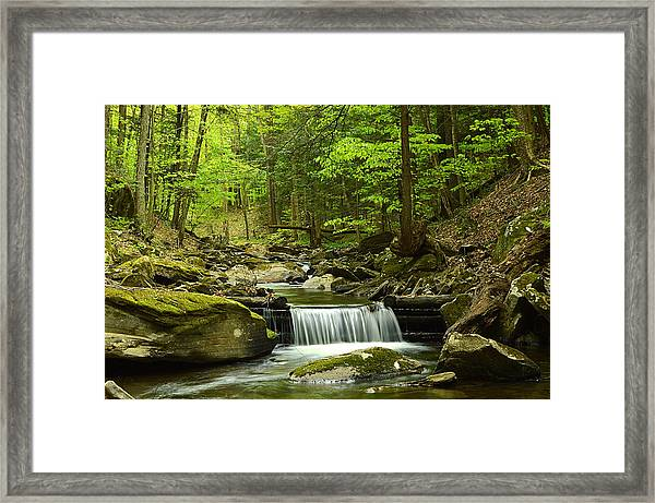 Double Run #1 - Worlds End State Park Framed Print