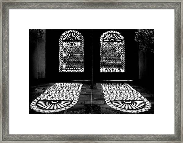Double Shade Framed Print