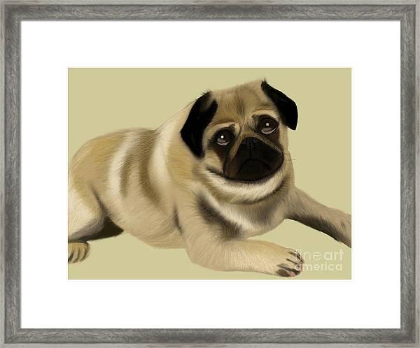 Doug The Pug Framed Print
