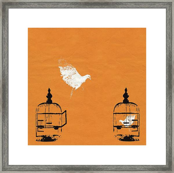 Dove Escaping Birdcage And Bird Trapped Framed Print