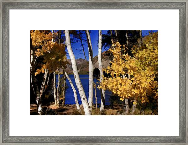 Down By The Lake Framed Print