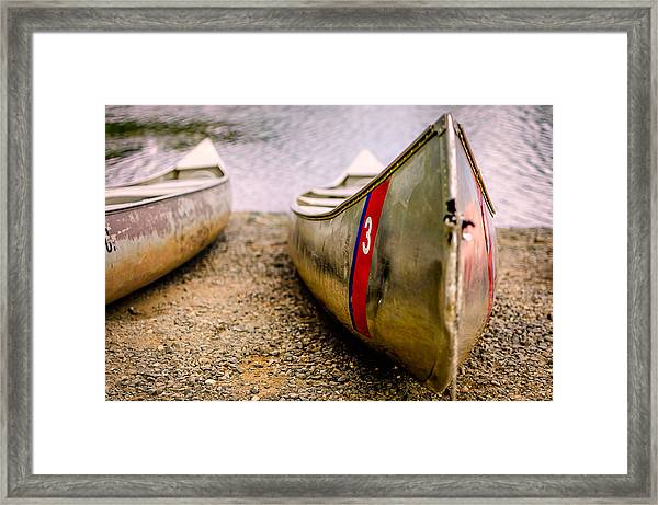 Framed Print featuring the photograph Down By The Lake by Steve Stanger