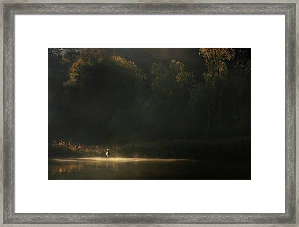 Down By The River Framed Print by Norbert Maier