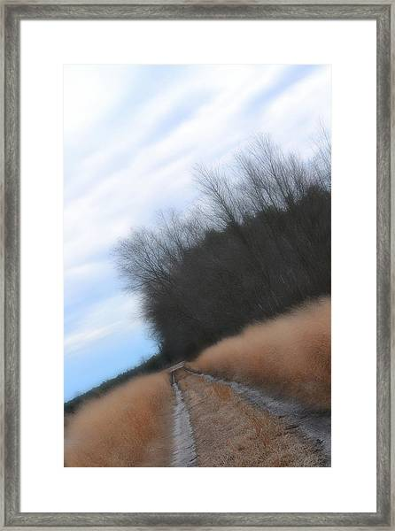 Framed Print featuring the photograph Down The Dirt Road by Beth Sawickie