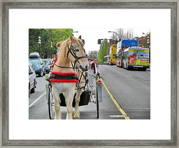 Downtown Horses Buses And Cars Framed Print