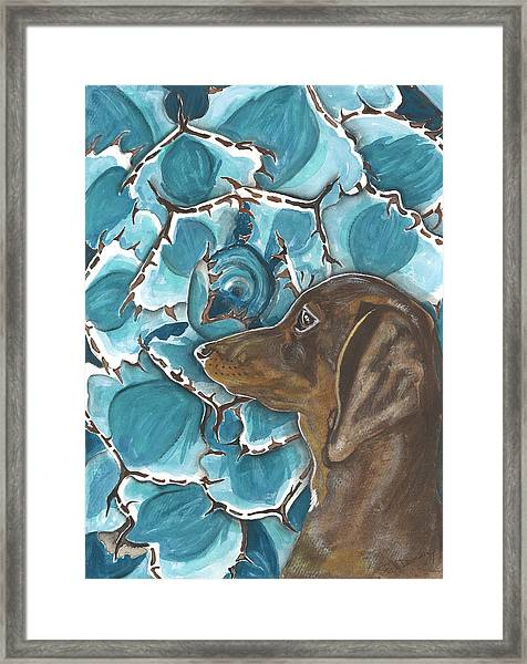 Doxie With Cactus Framed Print by Pat Devereaux