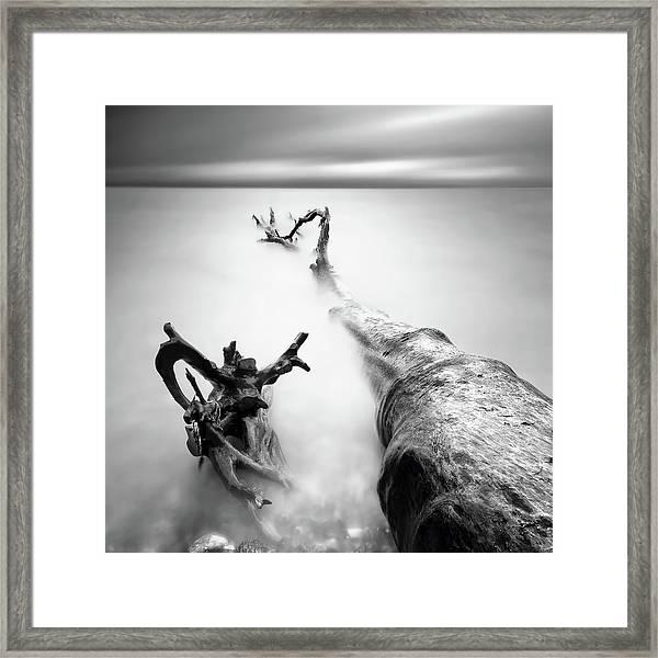 Dragon Framed Print by Marek Kijevsk?