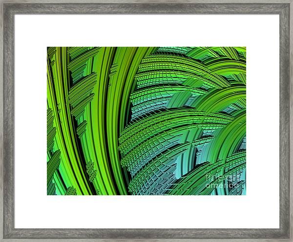 Dragon Skin Framed Print