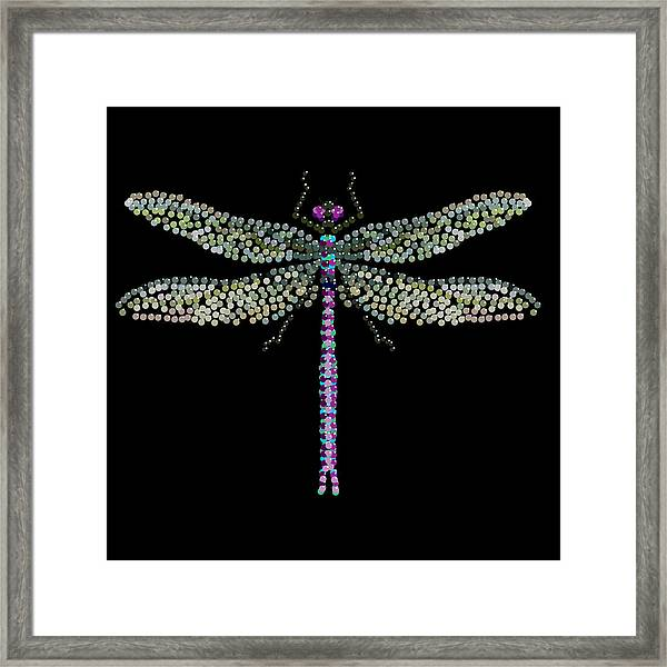 Dragonfly Bedazzled Framed Print