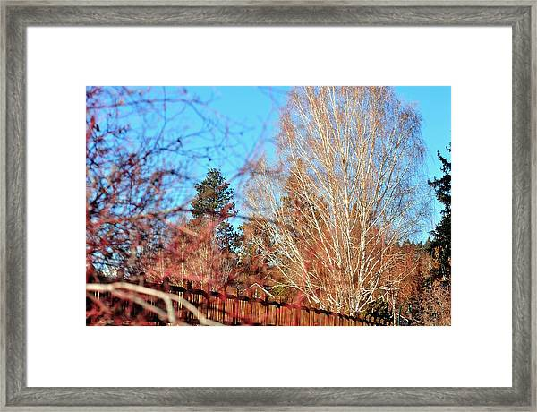Drake Park Bridge 21655 Framed Print