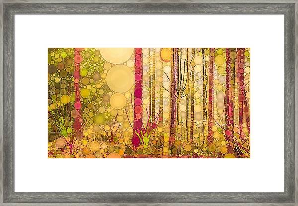Dream Framed Print
