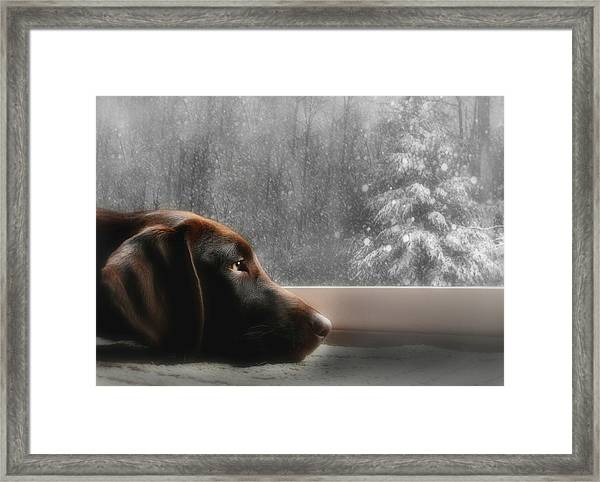 Dreamin' Of A White Christmas Framed Print