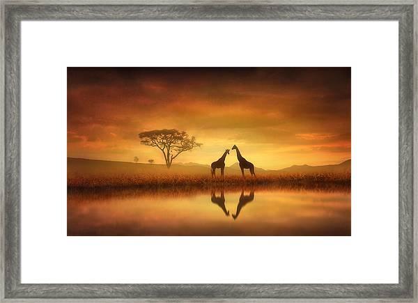 Dreaming Of Africa Framed Print