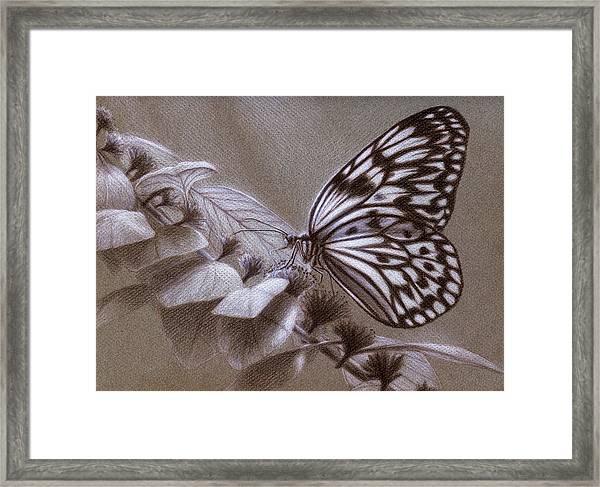 Dreams Sketch Framed Print