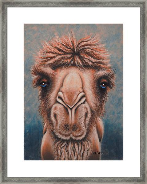 Dreamy Eyes Framed Print