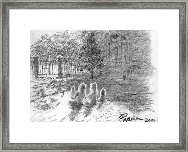 Drenched In Sunlight Framed Print by Horacio Prada