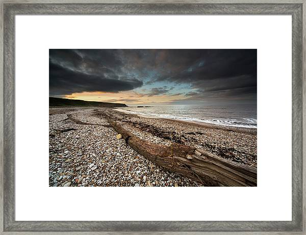 Driftwood Laying On The Gravel Beach Framed Print