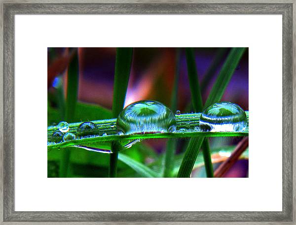 Drops In Color Framed Print