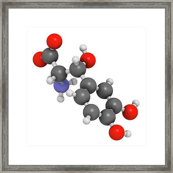 Droxidopa Hypotension Drug Molecule Framed Print by Molekuul