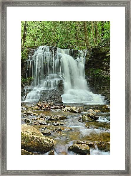 Dry Run Falls #1 Framed Print