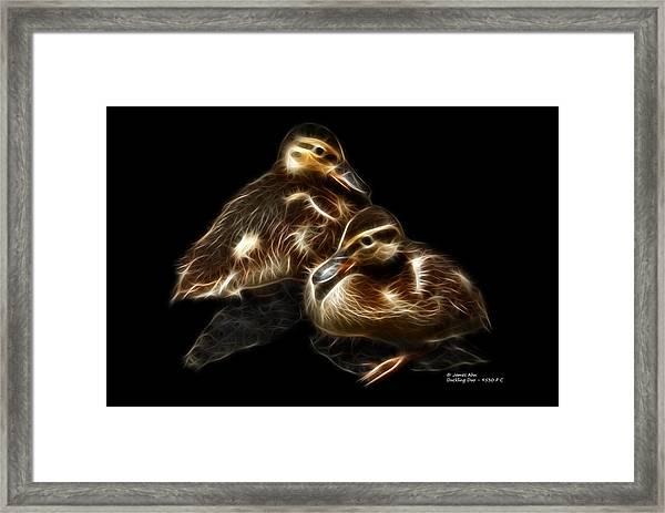 Duckling Duo - 9530 F C Framed Print