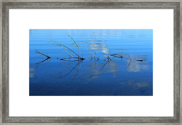 Duet Of The Branch And The Lake Framed Print