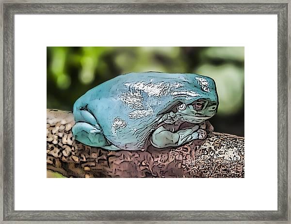 00014 Dumpy Tree Frog Framed Print