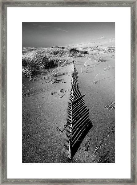 Dune # 5 Framed Print