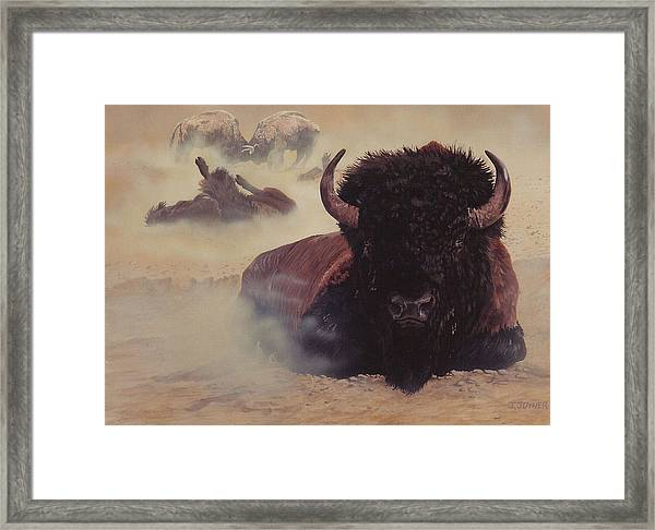 Dust Busters Framed Print
